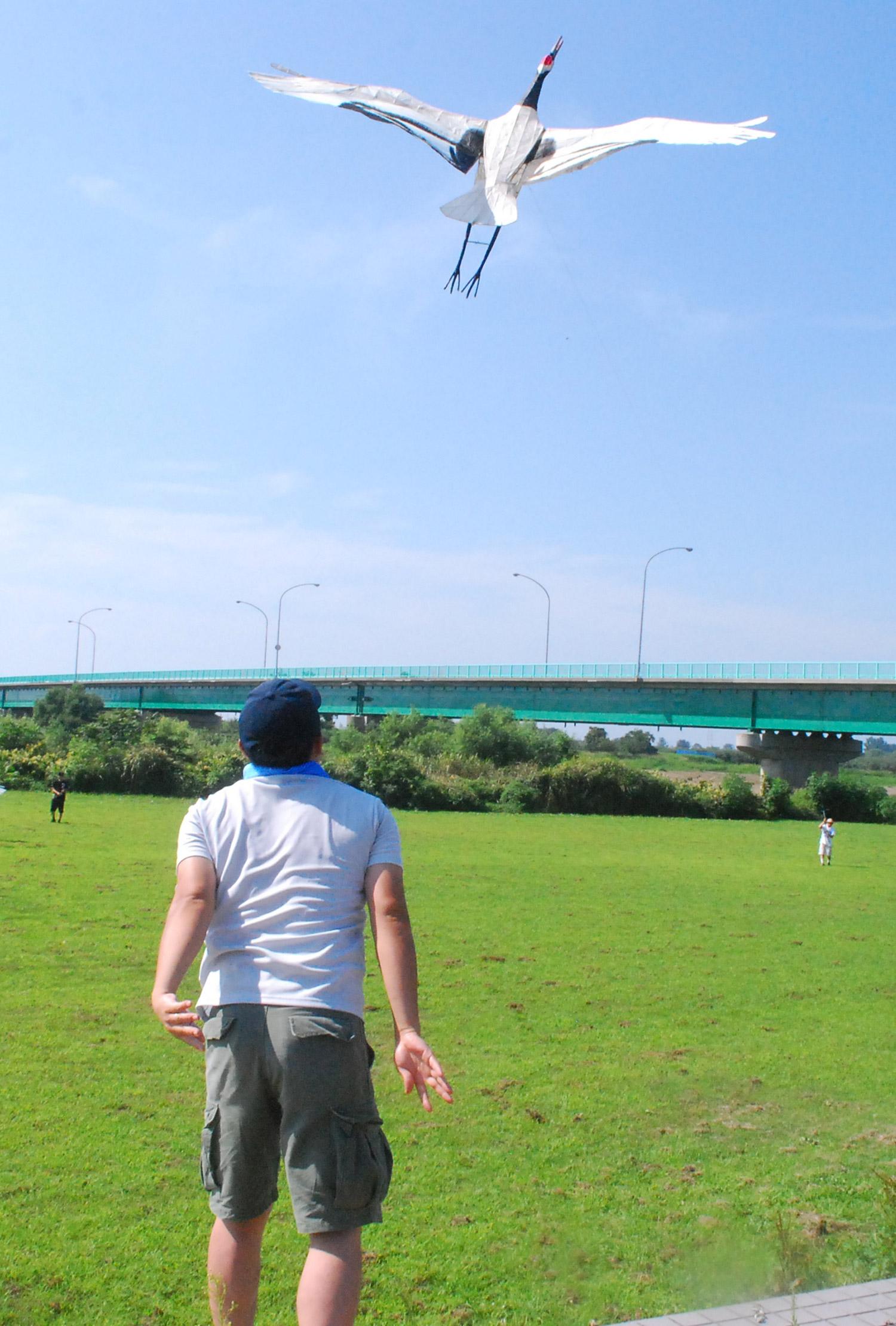 鹤风筝大会