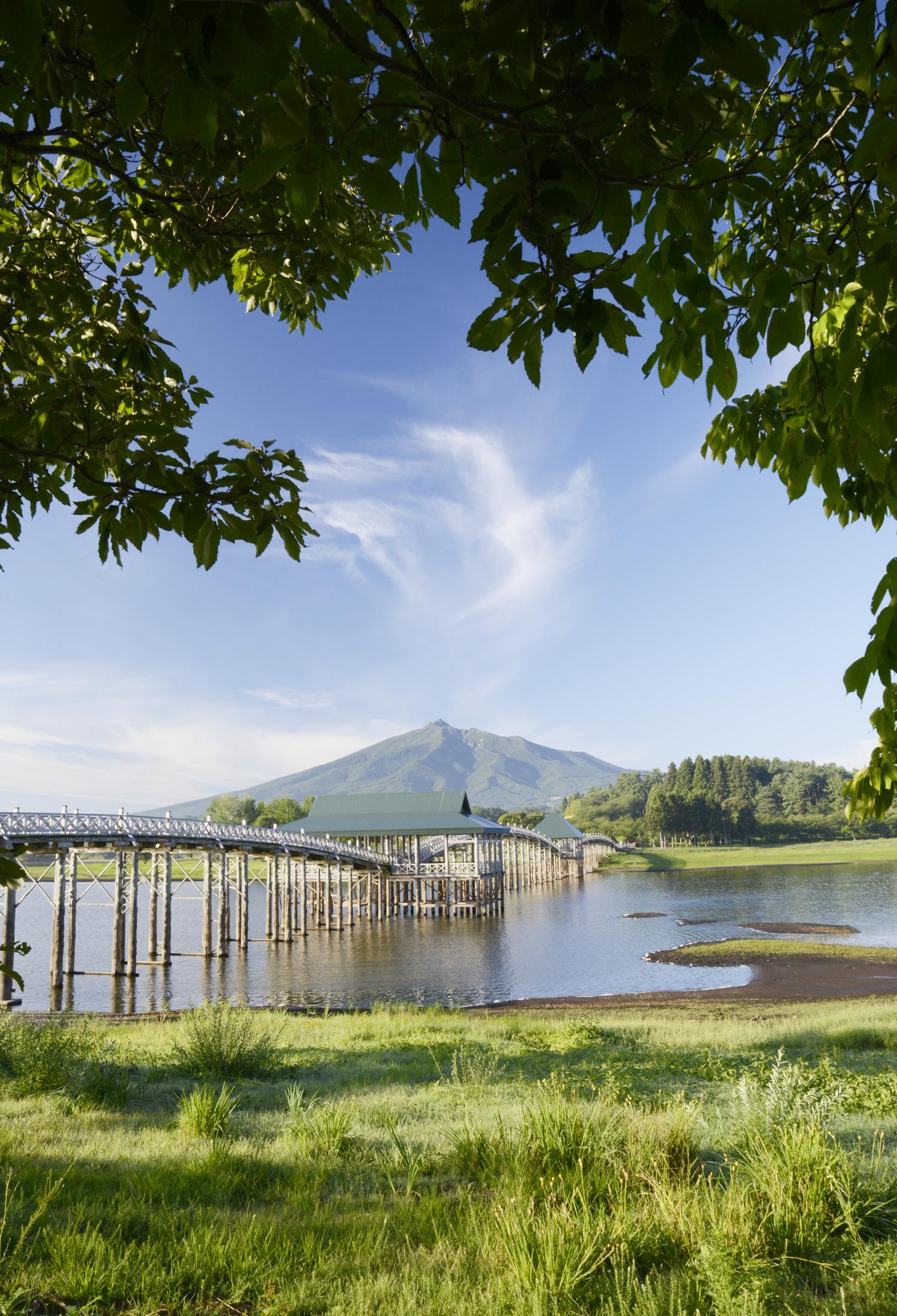 津轻富士见湖搭建了日本最长木桥