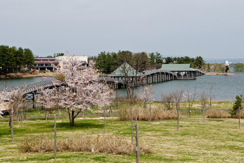 从富士见湖公园到丹顶鹤自然公园