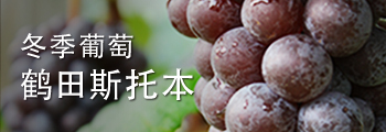 Winter Grape Tsuruta Steuben